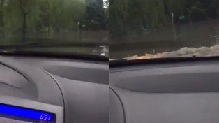 ¡Rezá Malena, se nos queda el auto!, puede ser el video viral del año
