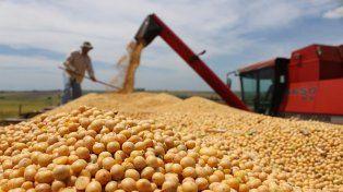India podría aumentar 50% sus compras de soja argentina en la próxima década
