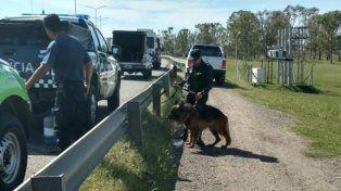 Un perro entrenado marcó el lugar donde estaba Araceli