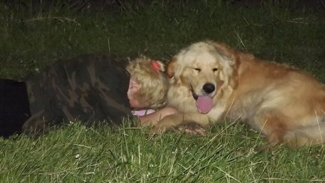 Una madre ofrece su auto como recompensa para quien le devuelva a su perro