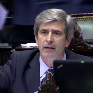 El legislador radical había impulsado la consulta popular vinculante.