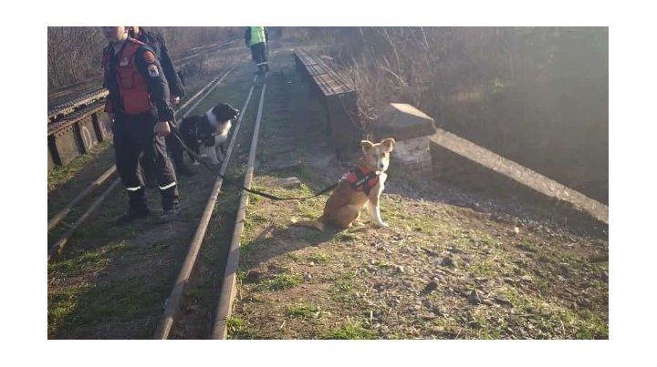Buscan a un bebé en las vías del tren Sarmiento tras escuchar sus llantos