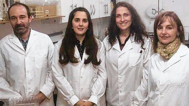 Talento local. El equipo de científicos del Instituto de Química.