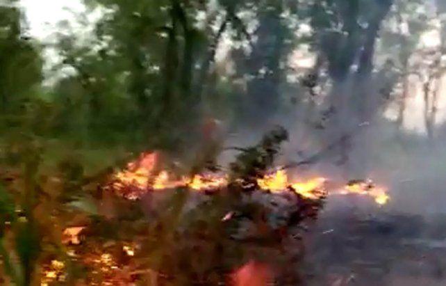 Las imágenes de los incendios en las islas entrerrianas