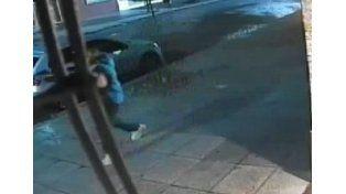 Un perro espantó a ladrones y evitó una entradera
