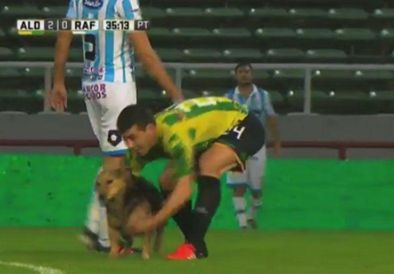 Un perro se paseó por la cancha y lo sacaron en Motoneta