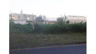 Uno de los terrenos que los vecinos piden que limpien y se utilice está ubicado sobre calle Salta.