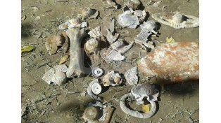 El Senado provincial pide informes sobre los restos hallados en Alto Verde