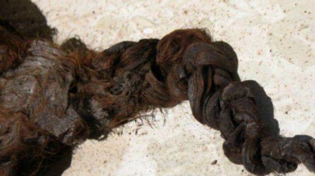 El misterio del cabello encontrado en un féretro