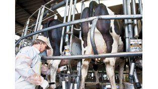 Aseguran que la crisis láctea en Santa Fe podría repercutir en las góndolas