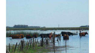 La producción santafesina está en una situación de crisis profunda en todas sus actividades.
