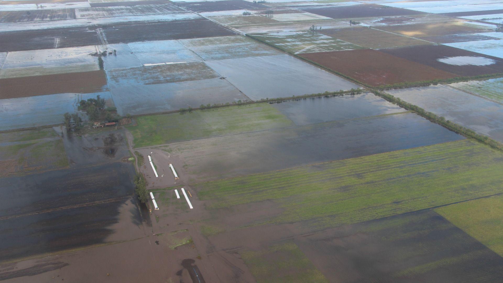 Emergencia hídrica: el 80 % de la zona tambera está bajo agua