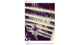 ¡Quién pudiera! Wanda Nara mostró su gran colección de zapatos
