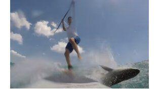 Un joven surfer se cayó de su tabla tras chocar con un tiburón y salió ileso de milagro