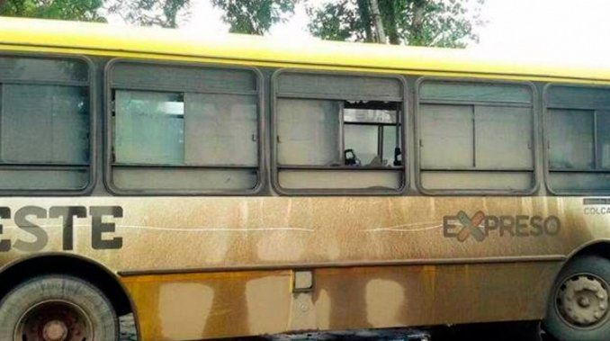 La Plata: quedó en coma irreversible al recibir un piedrazo arriba del colectivo