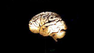 Identifican qué origina el mal de Alzheimer