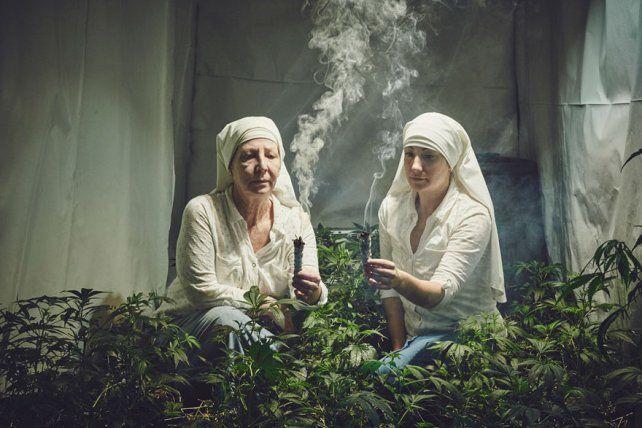 ¿Las tenías? Estas monjas cultivan marihuana para curar al mundo
