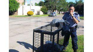 Macabro: conmoción en Bº Sargento Cabral por el hallazgo de un feto en un basurero