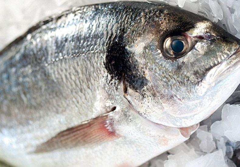 Semana Santa: recomendaciones a la hora de consumir pescados