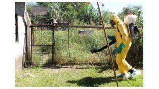 Ya son casi 1.000 los los casos de dengue en toda la provincia