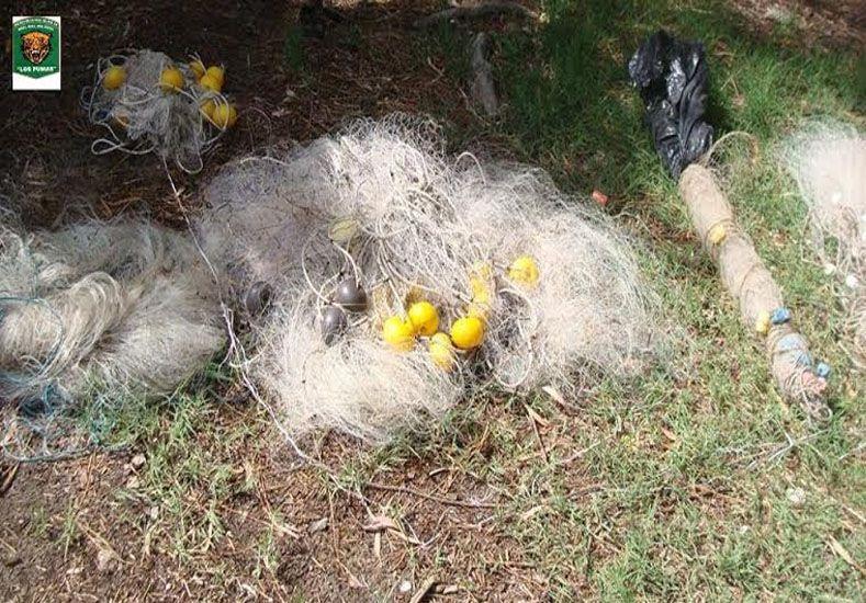 Secuestraron 1050 sábalos y 900 metros de redes a dos depredadores