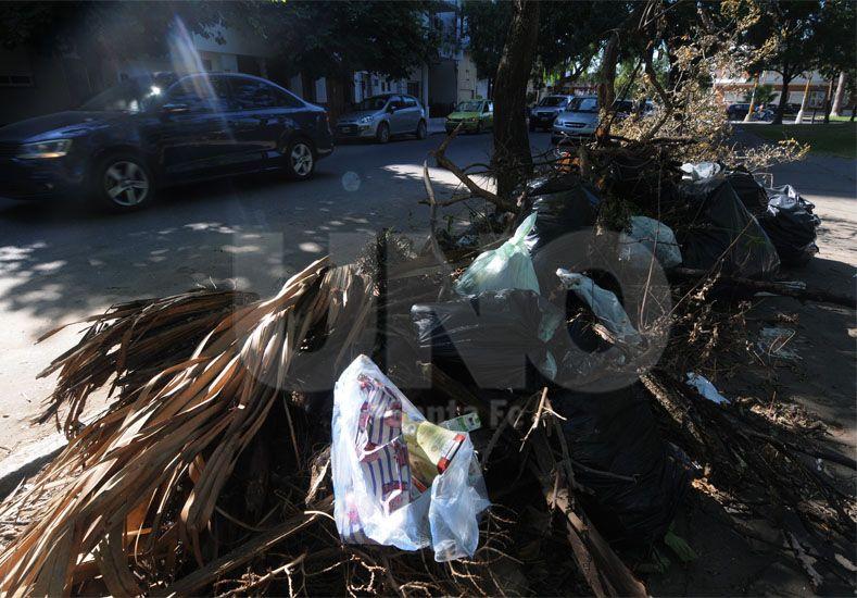 Montículos. Gran cantidad de ramas y yuyos siguen depositados en las calles de la ciudad / Foto: José Busiemi - Uno Santa Fe