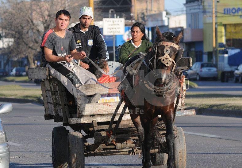 Reclamo. En varias ocasiones hubo marchas en la ciudad para retirar los carros tirados por caballos. UNO de Santa Fe/Juan M. Baialardo