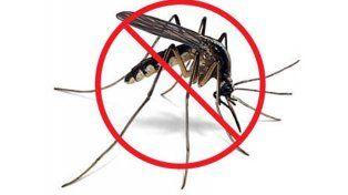 Cómo hacer repelente casero para mosquitos
