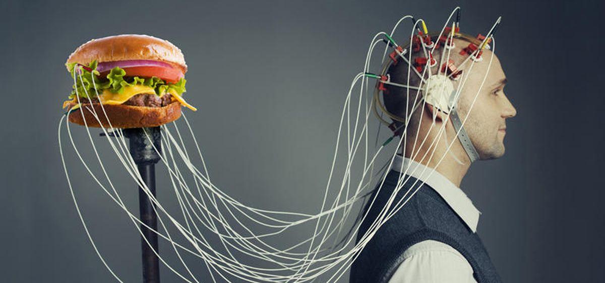 Científicos descubren el interruptor del hambre en el cerebro