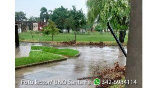 Vany Roldan mandó esta foto donde se pueden ver ramas obstruyendo los desagües.