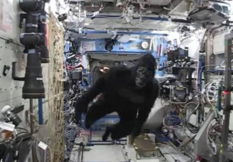 La broma del gorila en el espacio casi mata del susto a un astronauta