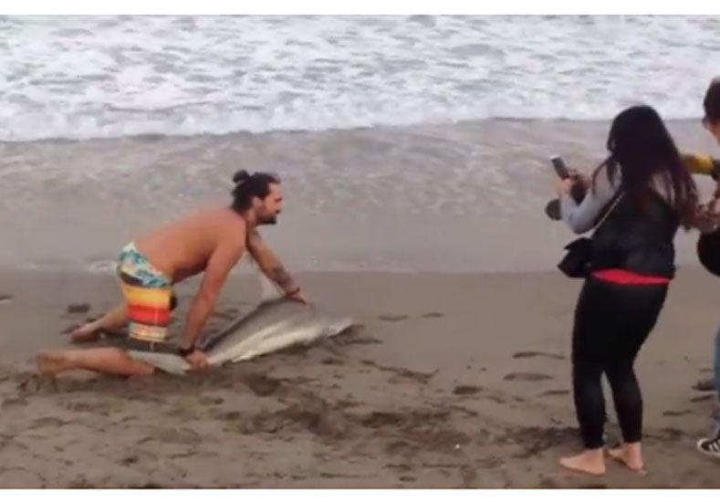 Sacan del agua a un tiburón para sacarse una foto
