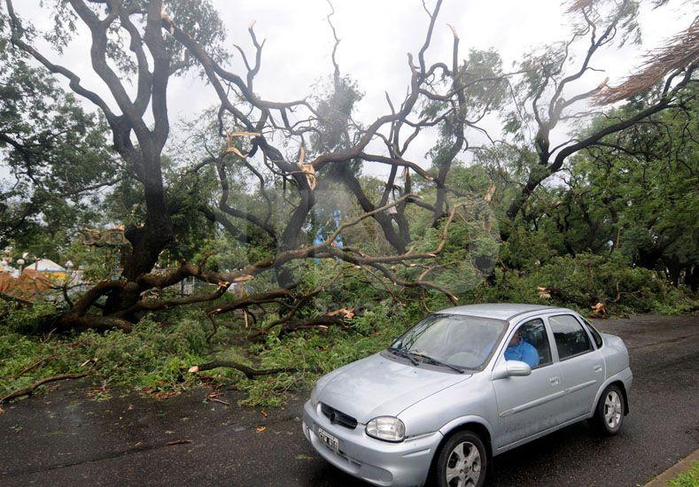 El panorama en algunos barrios de la ciudad fue devastador. Foto: M. Testi