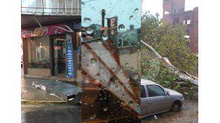 Árboles caídos, carteles tumbados y cables cortados por el fuerte temporal