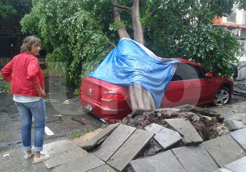 Un árbol cayó arriba de un auto en 9 de Julio entre Suipacha y Junín. Foto: Manuel Testi / Diario UNO Santa Fe