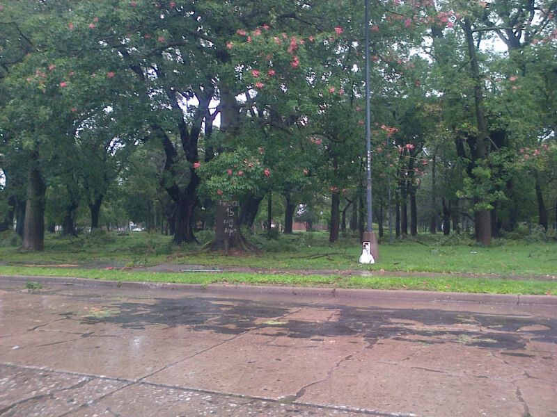 Así quedó el Parque Garay.
