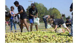 Productores de peras reclamaron mejores precios.