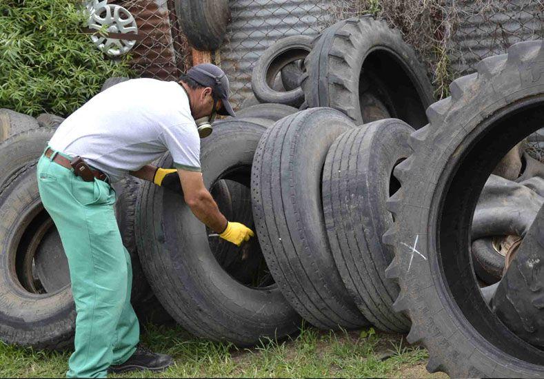 Dengue: ya suman 10 los casos en la ciudad y 81 en la provincia