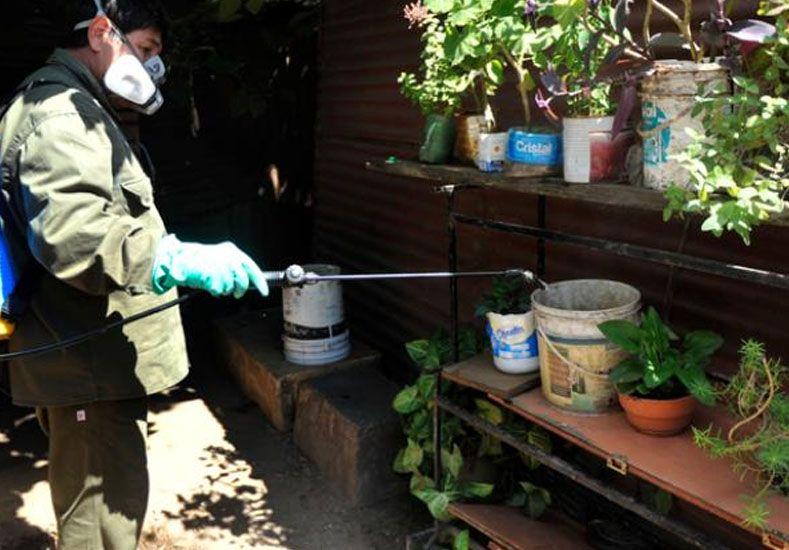 Brote de dengue: detectaron otro caso autóctono en Rosario y ya son cinco en la provincia