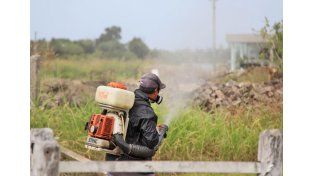 Prevención. Se trabaja en todas las viviendas cercanas a los casos confirmados / Foto: Gentileza Municipalidad de Santa Fe