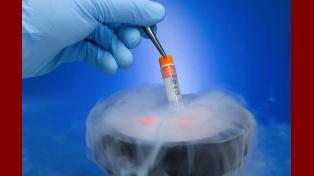 Criopreservados. Los gametos masculinos se congelan luego de un estricto proceso de análisis y selección.