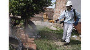 Desinsectación. El trabajo de pulverización debe ir acompañado por medidas hogareñas.