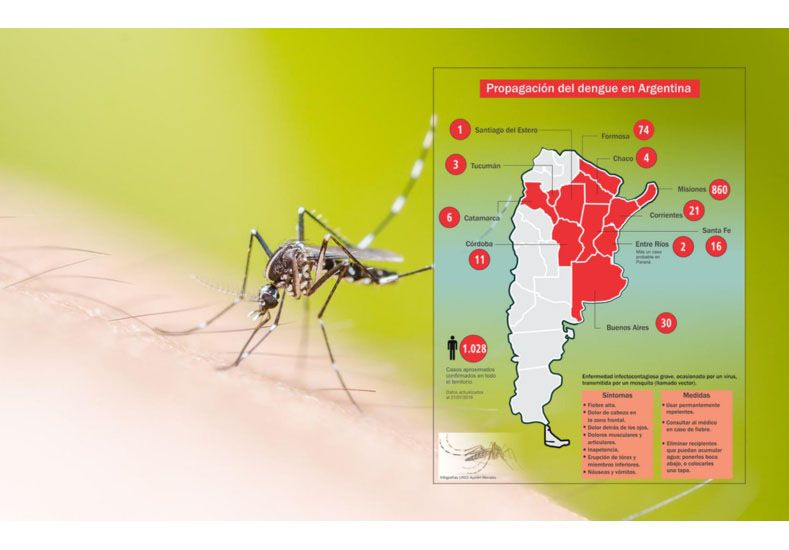 Confirmaron que hay epidemia de dengue y dejaron de contar los casos