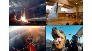 Estos fueron los videos que más se viralizaron en el 2015