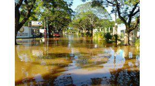 Foto. Facebook/Conectados Concordia