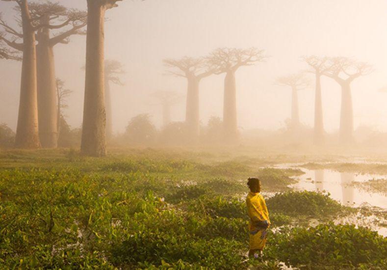 Las mejores fotos de National Geographic de 2015