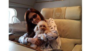 Las desopilantes aventuras aéreas de Lolita, la perra de Cristina