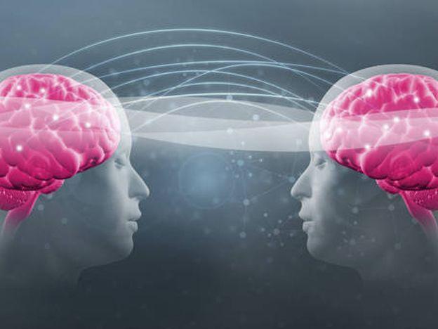 Definen que el cerebro no tiene sexo