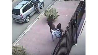 Video: se tocó frente a dos chicas en la vía pública