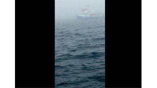 Filmaba el océano y de pronto se llevó el susto de su vida...